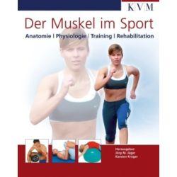 Der Muskel im Sport: Anatomie, Physiologie, Training, Rehabilitation